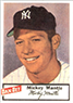 MICKEY MANTLE 1954 Dan-Dee Potato Chips Card Reprints YANKEES